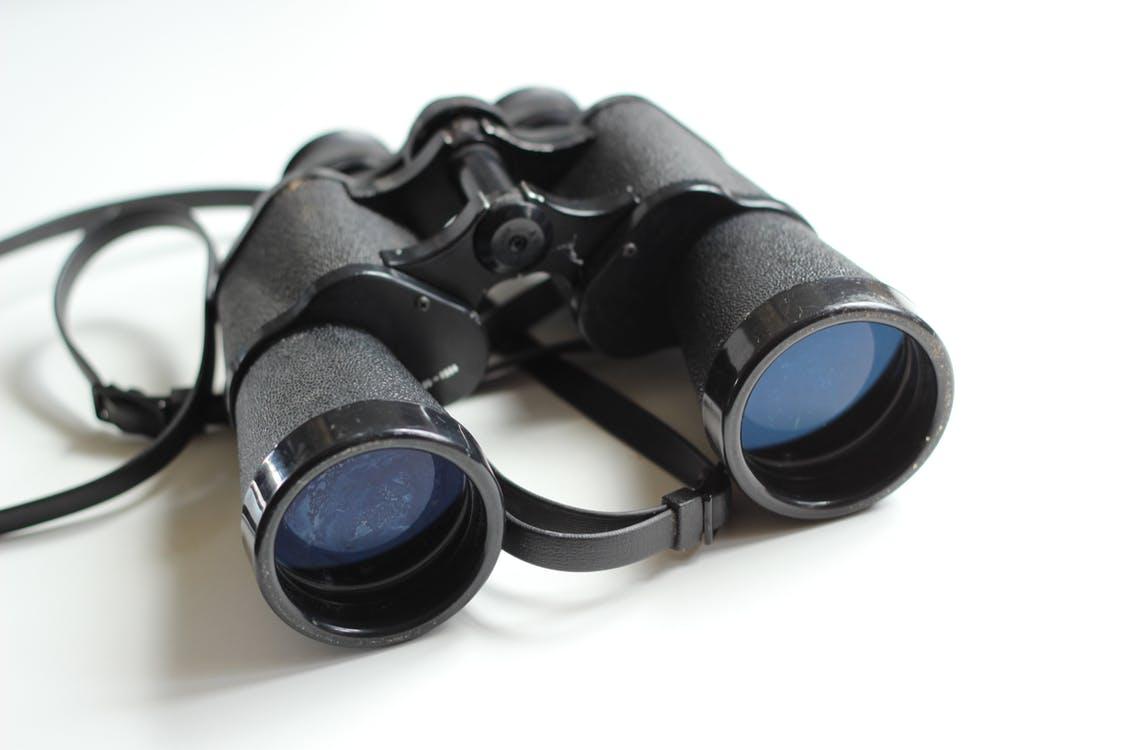 Der Privatdetektiv – Ermittler, Observierer, Personenschützer